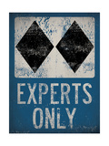 Experts Only Blue