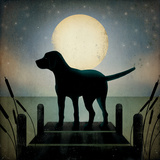 Moonrise Black Dog