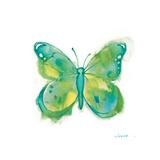 Birdsong Garden Butterfly II on White