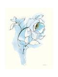 Carols Roses III Blue