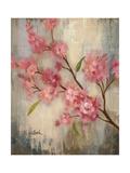 Cherry Blossom II Crop