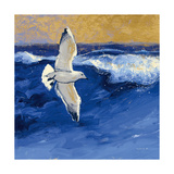 Seagulls with Gold Sky II