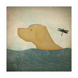 Yellow Dog Swim