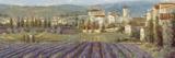 Provencal Village - Landscape