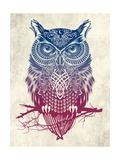 Warrior Owl Reproduction d'art par Rachel Caldwell