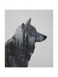 Loup en hiver Reproduction d'art par Davies Babies