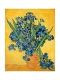 Irises, 1890 Reproduction d'art par Vincent Van Gogh