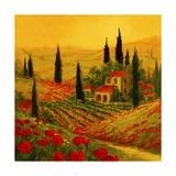 Poppies of Toscano II