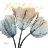 Fall Tulips