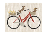 Doxie Ride ver I Red Bike