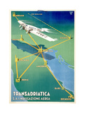 Transadricatica