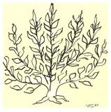 Le Buisson Reproduction d'art par Henri Matisse