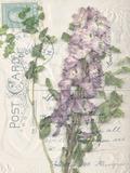 Small Postcard Wildflowers I Papier Photo par Jennifer Goldberger