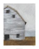 Abandoned Barn I