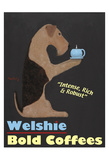 Welshie Bold Coffees