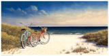 Hampton Bikes