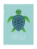 Sea Turtle (Spanish)