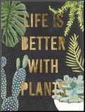 Plant Gold III Reproduction montée par Julie Silver