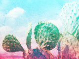 Photograph of Some Green Nopal Cactuses and Color Gradient Papier Photo par Bernardojbp