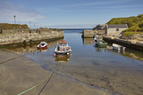 Balintoy harbour  near Giant's Causeway  County Antrim  Ulster  Northern Ireland  United Kingdom  E