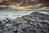 An evening view of the Giant's Causeway  UNESCO World Heritage Site  County Antrim  Ulster  Norther