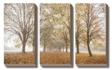 Autumn's Peace Tableau multi toiles par Assaf Frank