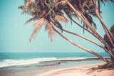 Plage tropicale Papier Photo par Byrdyak