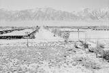 Manzanar Relocation Center from Guard Tower  view west   1943
