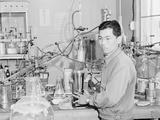 Frank Hirosama in laboratory at Manzanar  1943