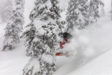 Snowboarding in powder at Whitefish Mountain  Montana  USA