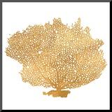 Golden Sea Fan I (gold foil)