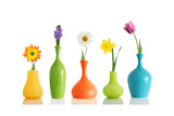 Spring Flowers In Vases Isolated On White