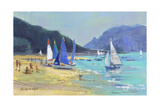 Salcombe Sailing Boats