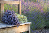 Bouquets on Lavenders on a Wooden Old Bench
