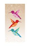 Colorful Humming Birds Illustration