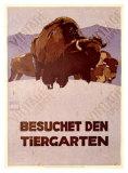 Besochet Den Tiergarten