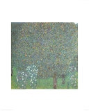 Roses under the Trees Reproduction d'art par Gustav Klimt