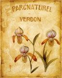 Parcnaturel IV