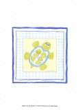 Turtle with Plaid IV