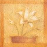 Refined Flower I