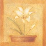 Refined Flower II