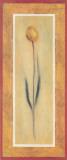 Yellow Tulips II