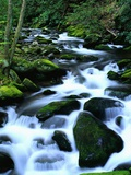 River Cascading Down Moss-Covered Rocks