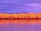 Sunset on Summer Lake