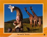Imaginary Safari  Giraffe