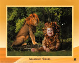 Imaginary Safari  Lion