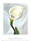Calla Lily Turned Away, 1923 Reproduction d'art par Georgia O'Keeffe