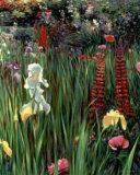 Spring Medley Revisited I