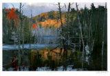 Morning at Bear Creek Pond