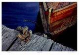 Kervin's Dock